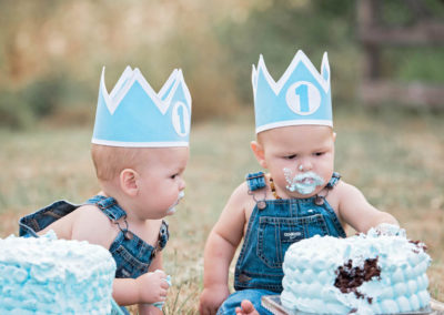 puyallup child photographer twins boys girls outdoor cakesmash family -31