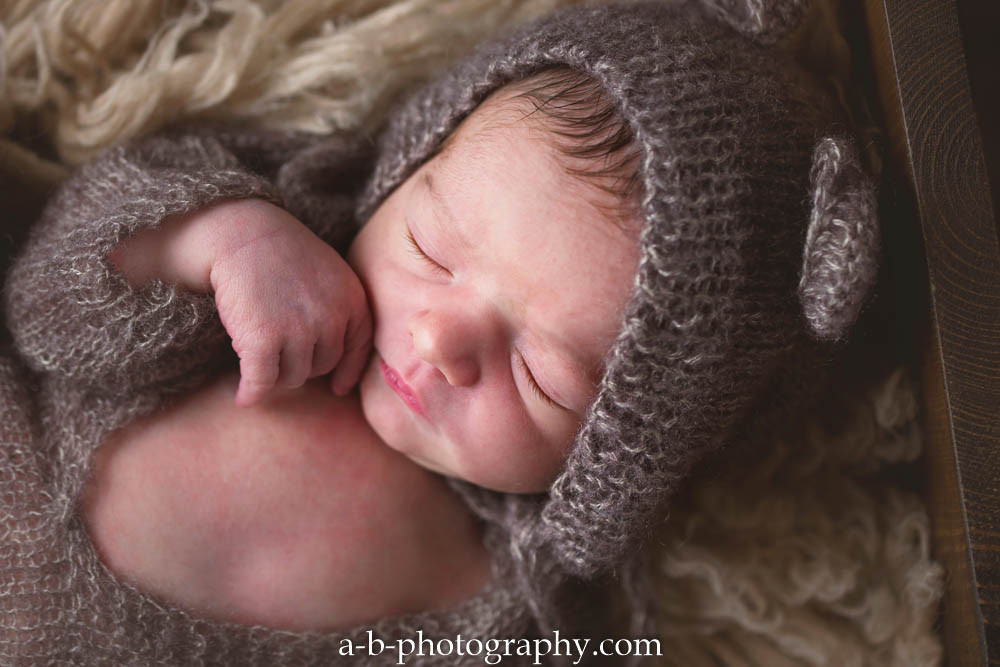 Puyallup newborn photographer boy baby studio bears blue parent sibling shots nutraul colors-12