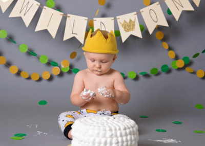 puyallup child photographer wild one boy studio where the wild things are cake smash -21